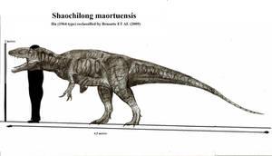 Shaochilong maortuensis