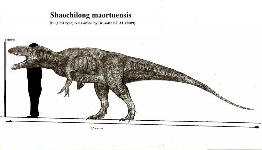 shaochilong maortuensis by teratophoneus on deviantart