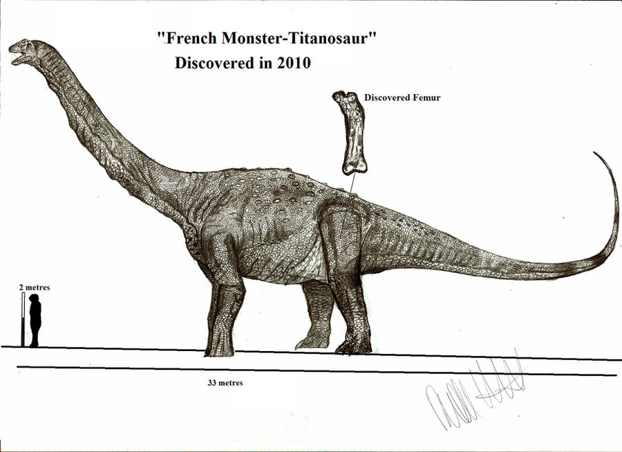 French Monster Titanosaur by Teratophoneus on DeviantArt