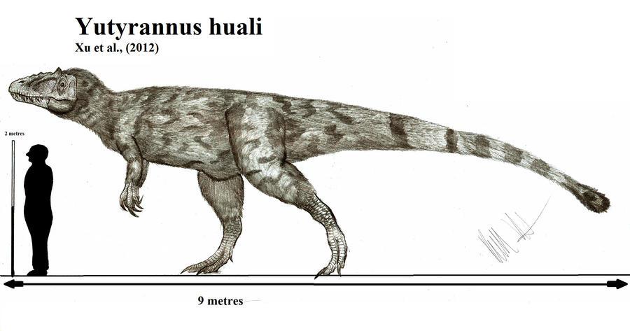 Yutyrannus huali