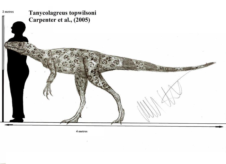 Tanycolagreus topwilsoni by Teratophoneus