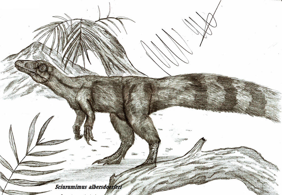 Sciurumimus albersdoerferi by Teratophoneus