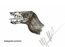 Killer Pterosaur? by Teratophoneus