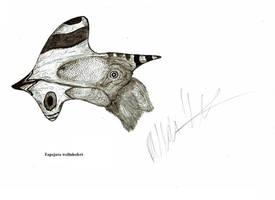 Tapejara wellnhoferi by Teratophoneus