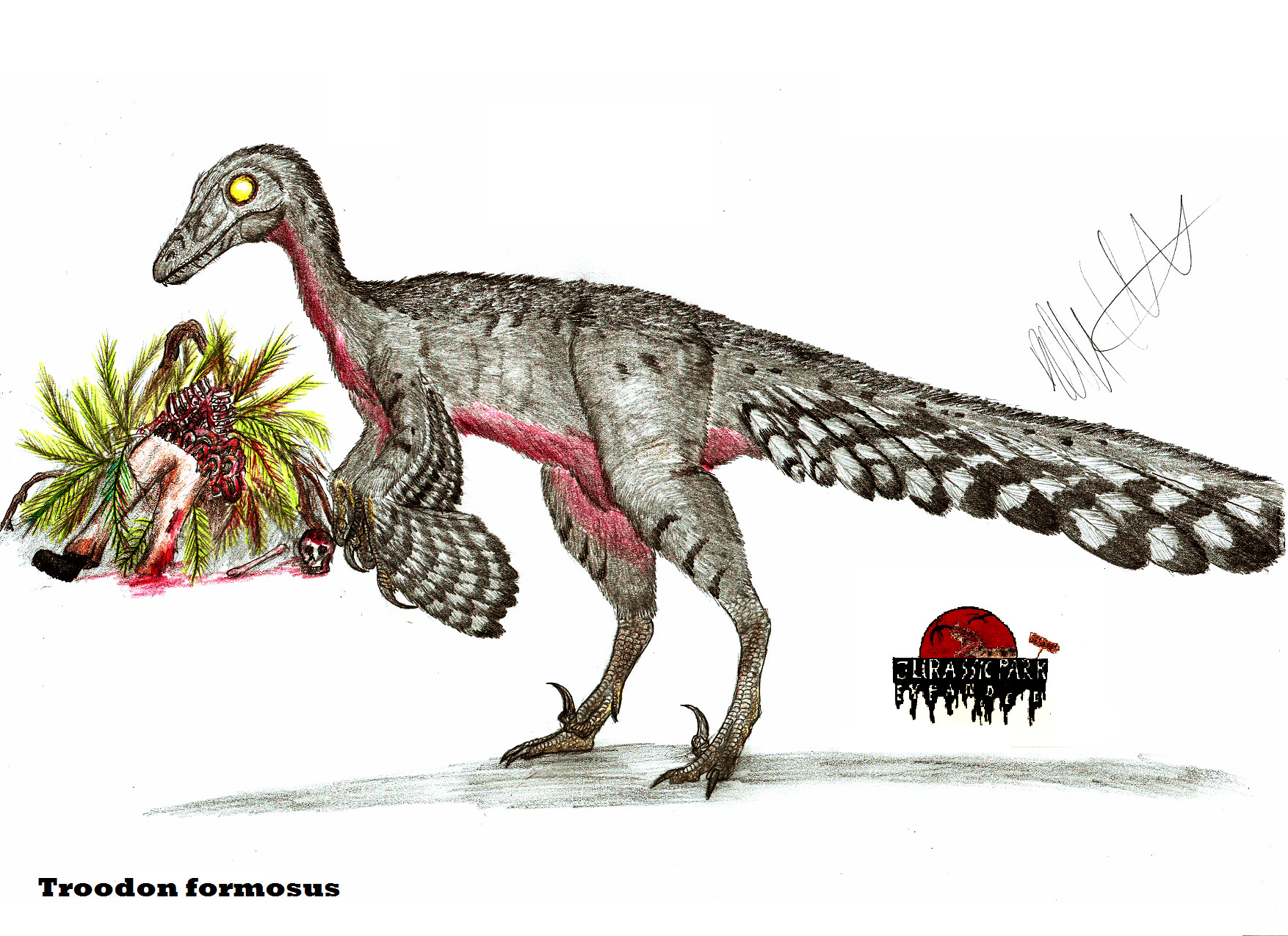 JP-Expanded Troodon by...