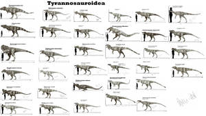 Tyrannosauroidea