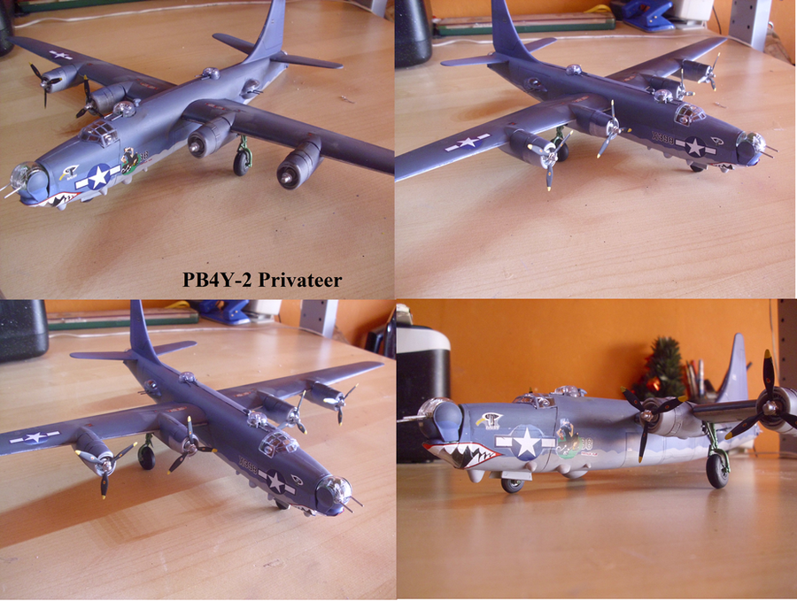 PB4Y-2 Privateer by Teratophoneus