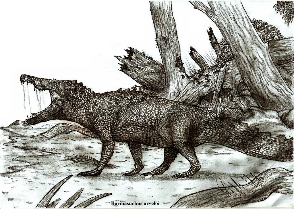 https://img03.deviantart.net/edc7/i/2013/085/9/7/barinasuchus_arveloi_by_teratophoneus-d5zbvfx.jpg