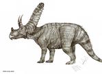 Judiceratops tigris by Teratophoneus