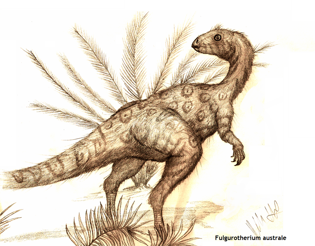 Fulgurotherium australe by Teratophoneus