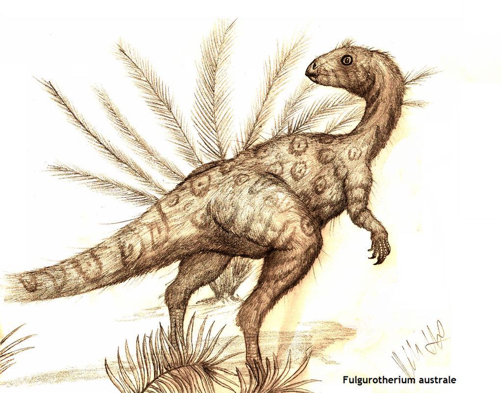 Fulgurotherium australe