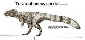 Teratophoneus curriei