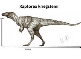 Raptorex kriegsteini by Teratophoneus