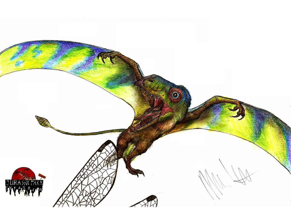 JP-Expanded Peteinosaurus by Teratophoneus