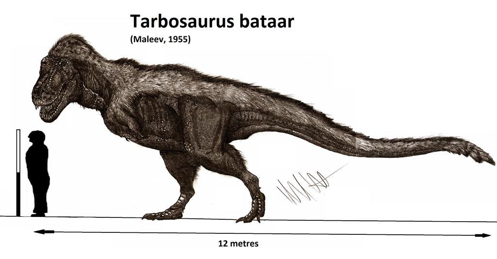 Tarbosaurus bataar by Teratophoneus