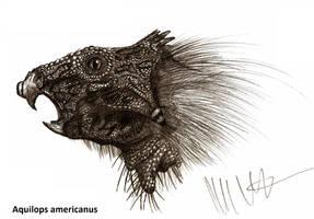 Aquilops americanus by Teratophoneus