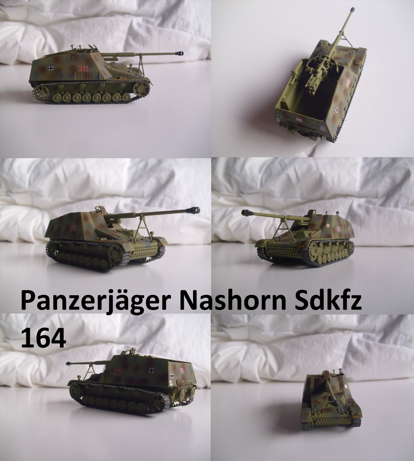 Panzerjaeger Nashorn by Teratophoneus