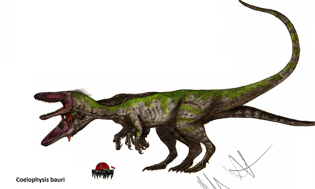 JP-Expanded Coelophysis by Teratophoneus