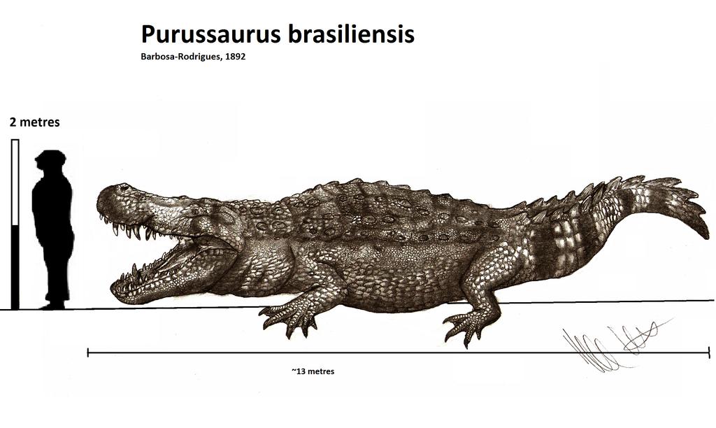 Giant crocs 01 : Purussaurus brasiliensis by Teratophoneus ...