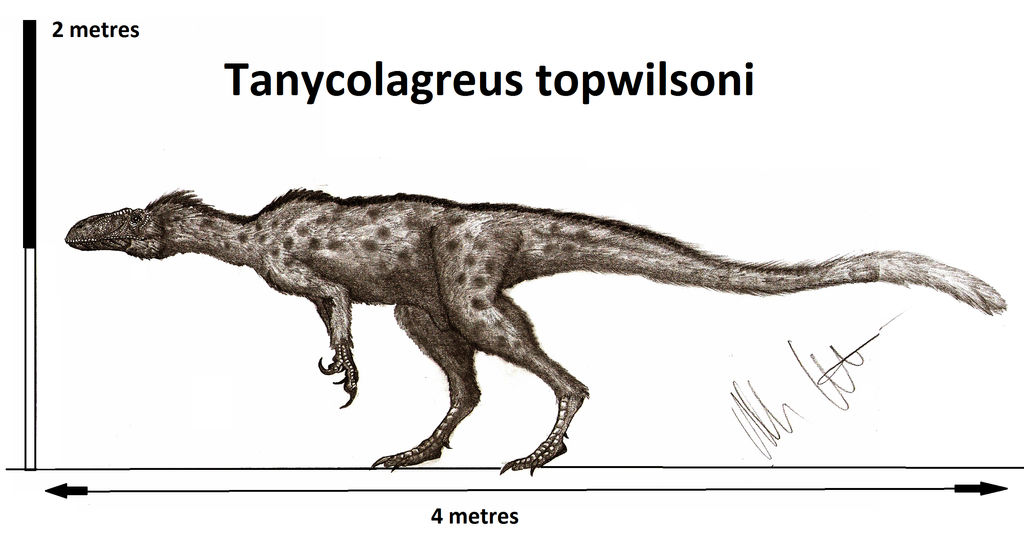 Tanycolagreus topwilsoni
