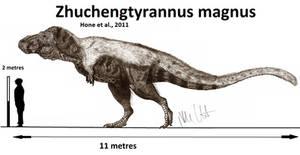 Zhuchengtyrannus magnus (updated)