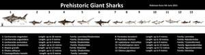 Giant Sharks
