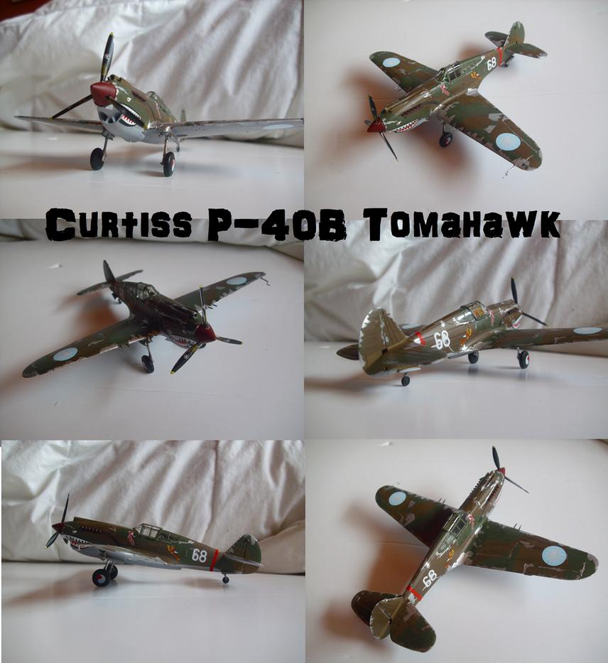 Curtiss P-40B Tomahawk by Teratophoneus