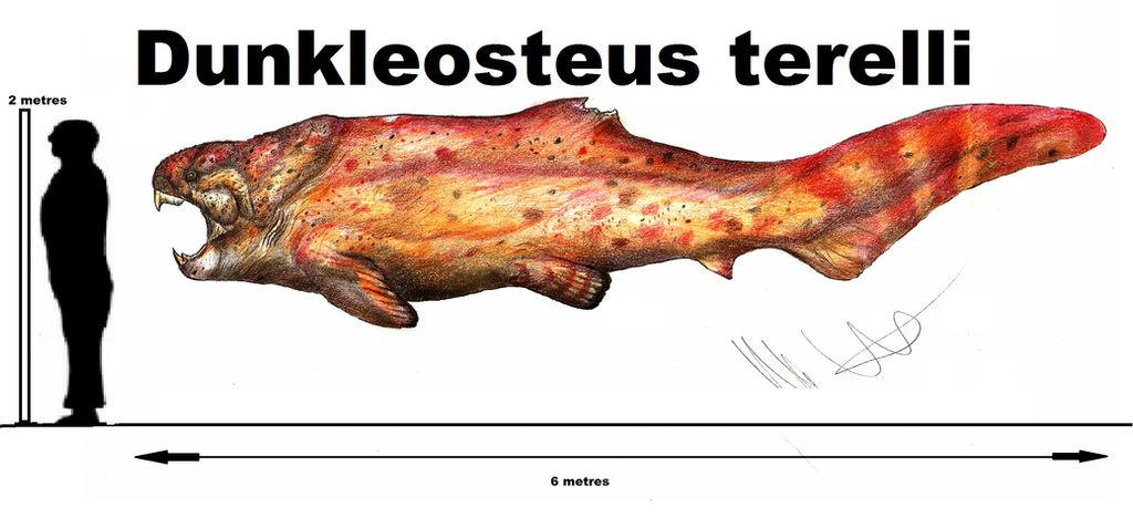 Dunkleosteus terelli  the tank fish!