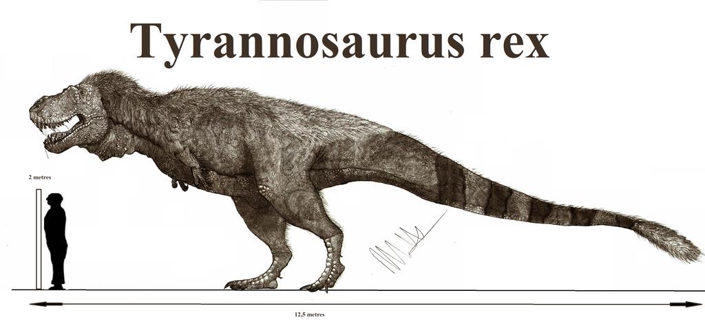 Tyrannosaurus rex by teratophoneus on deviantart tyrannosaurus rex by teratophoneus altavistaventures Gallery