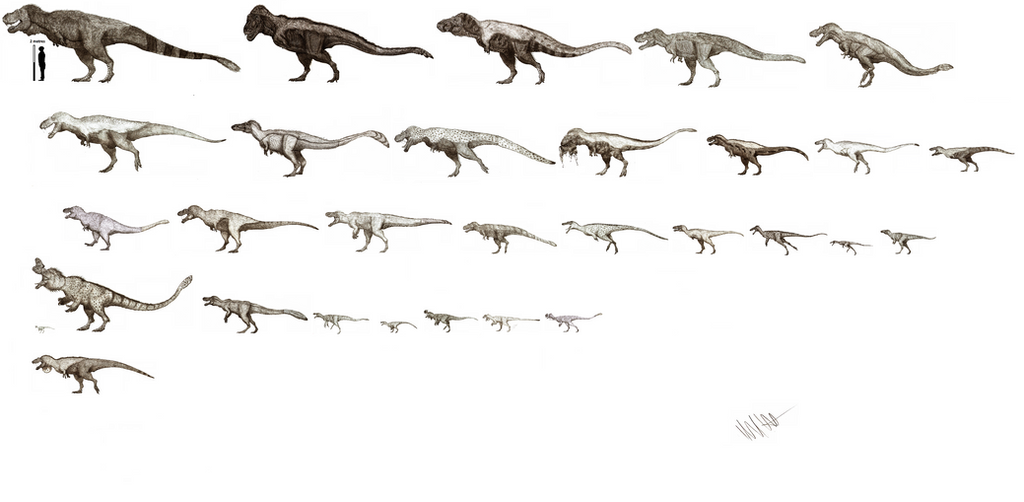 The Tyrannosaur project WIP by Teratophoneus