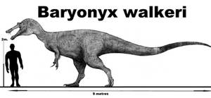 Baryonyx walkeri(updated) by Teratophoneus
