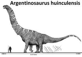 Argentinosaurus huinculensis by Teratophoneus