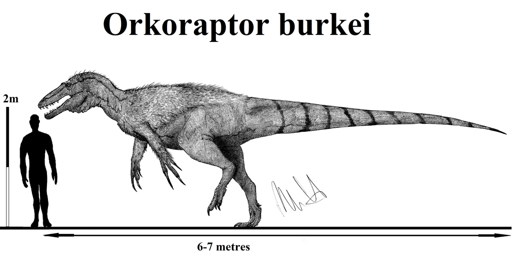 Orkoraptor burkei by Teratophoneus