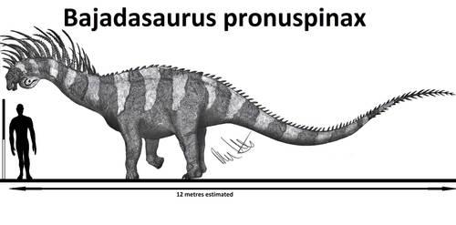 Bajadasaurus pronuspinax by Teratophoneus