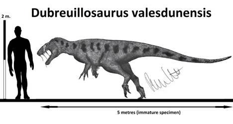 Dubreuillosaurus valesdunensis by Teratophoneus