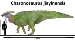 Charonosaurus jiayinensis