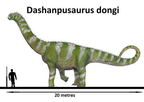 Dashanpusaurus dongi