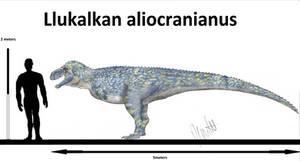 Llukalkan aliocranianus