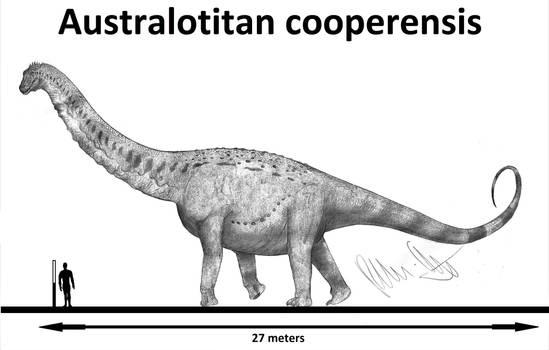 Australotitan cooperensis