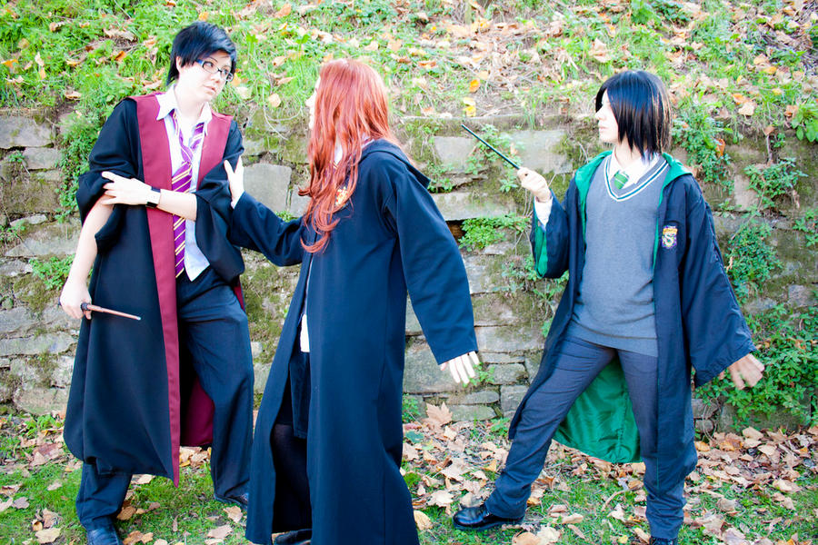 Harry Potter Lily And James James Potter Lily Evans