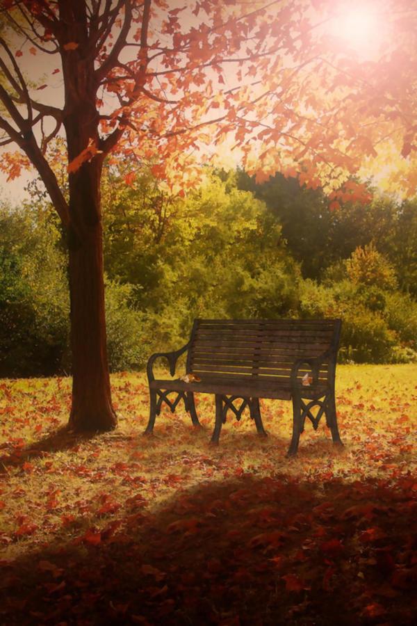 Premade Nature Background by Sannalee01 on DeviantArt