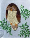 Owl Towel 3 by Tiff-N-Things