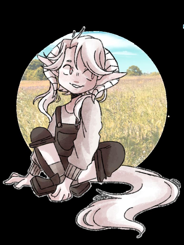 in the meadow by echoow