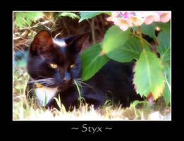 Styx by demonika