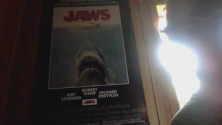 SHARK WEEEEEEEK!!!!