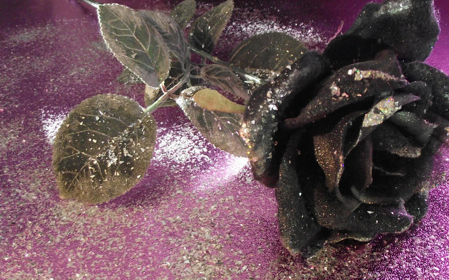 Black Rose by yohlenyaoilover
