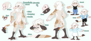 Flower-Quil Reference Sheet Commission