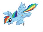 Dash Flying COLOR