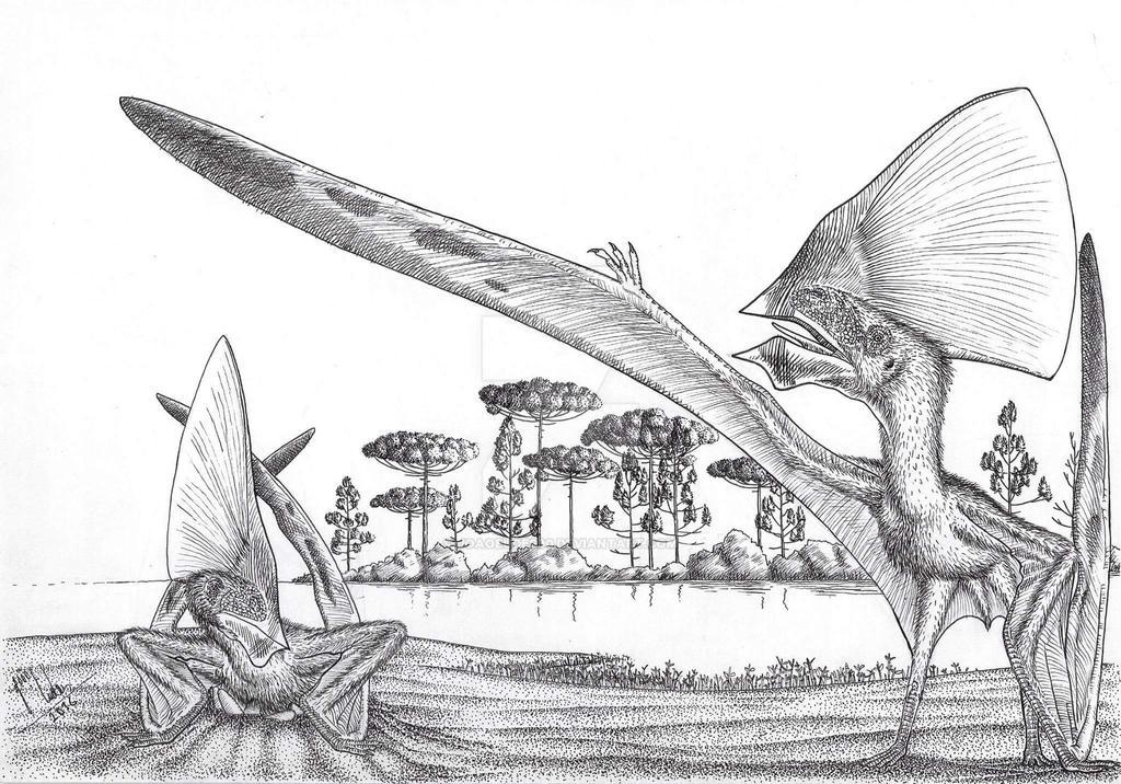 Tupandactylus imperator in nest by Joaoeudes90