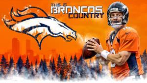 Denver Broncos Peyton Manning Broncos Country Wall